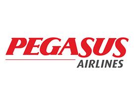 +pegasus-large-logo